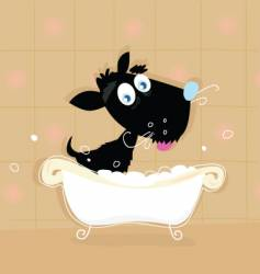 dog bath vector image