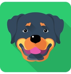 dog Rottweiler icon flat design vector image