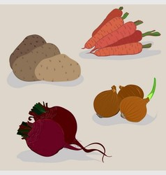 Four vegetable vector