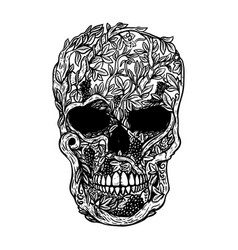Hand drawn human skull made from grapevine design vector