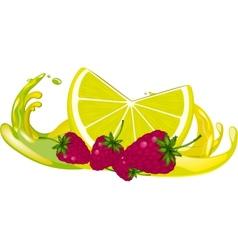 Juice splash vector image