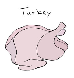 raw turkey full carcass realistic vector image