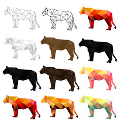 set lion polygon geometric vector image