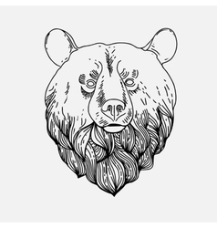 Thin vintage line bear vector