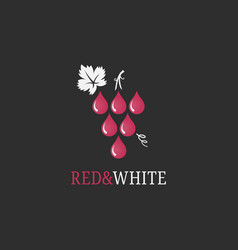wine grape logo red and white wine drops on black vector image
