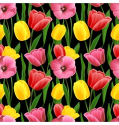 Tulip seamless background vector image