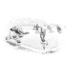Baseball in jungleville 2 vintage vector