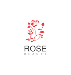 beauty rose logo vector image