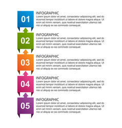 business options infographic timeline design vector image