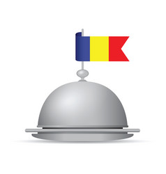romanian flag dinner platter vector image