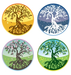 tree in four seasons vector image