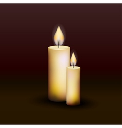 Two burning candles on a dark background vector