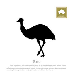 black silhouette of ostrich emu vector image vector image