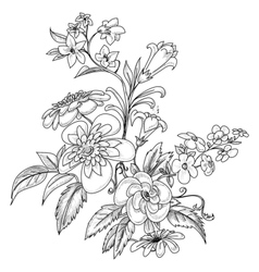 graphic ornate flowers vector image vector image