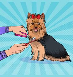 Pop artbrushing teeth yorkshire terrier vector