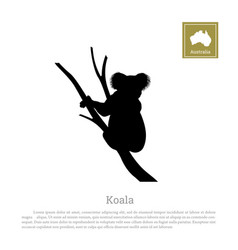 black silhouette of koala on white background vector image vector image