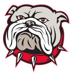 bulldog vector image vector image