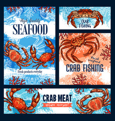 Crab fishing seafood and crustacean meat vector