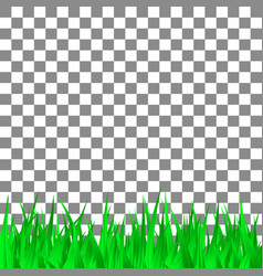 green grass on transparent background template vector image