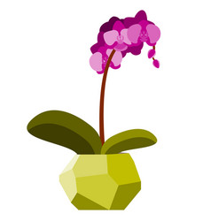 With orchid in geometric vector