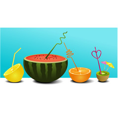 summer fruit juice vector image vector image