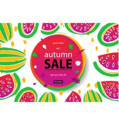 autumn sale watermelon vector image
