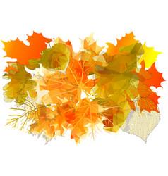 Autumn yellow leaves vector