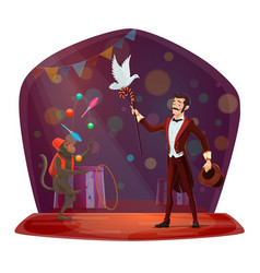 Circus monkey juggling dove hat show vector