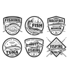 fishing tours fisherman camp sport club badges vector image