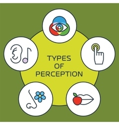 Five senses concept vector