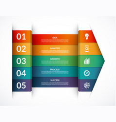 infographic options banner template vector image