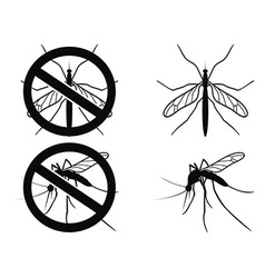 Mosquitoes warning symbol vector image
