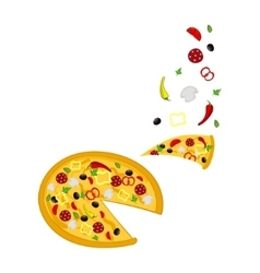 Pizza and ingridients vector