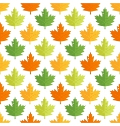 Seamless pattern with colorful maple leaves vector