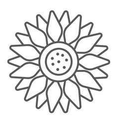 sun flower thin line icon farming and agriculture vector image