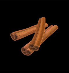 Three sticks of cinnamon fragrant spice vector
