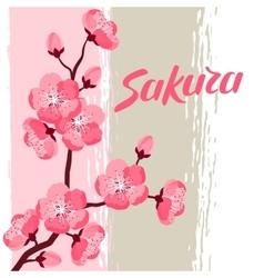 Japanese sakura background with stylized flowers vector image vector image