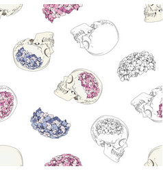 seamless patterns with female skulls vector image vector image