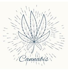 Cannabis and vintage sun burst frame vector