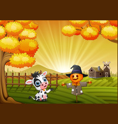 Cartoon cow with halloween scarecrow in the farm b vector