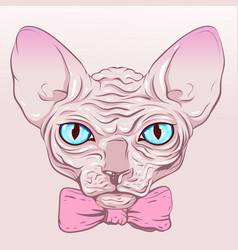 Cat without fur hairless sphinx pink bow vector