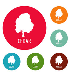 Cedar tree icons circle set vector