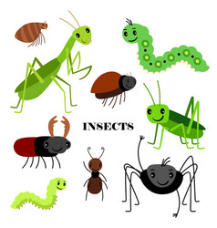 crawling insects isolated vector image