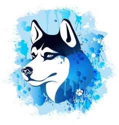 watercolor image of the head of a dog of the husky vector image vector image