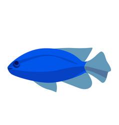 fish icon flat ocean or sea vector image vector image