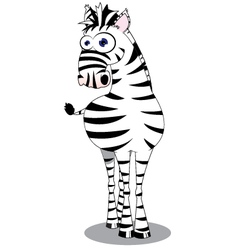 Funny Zebra vector image vector image