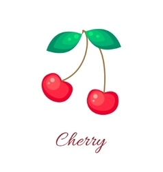 Red cherry icon vector image vector image