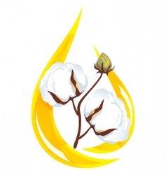 cotton seed oil vector image vector image