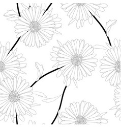 aster flower on white background vector image vector image