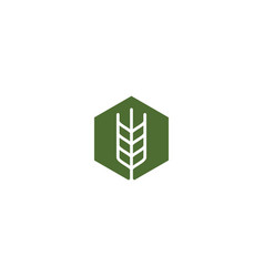 farmer box wheat logo icon hexagon vector image